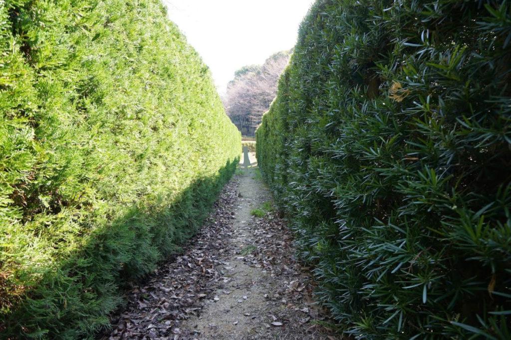 公渕森林公園 樹木見本園