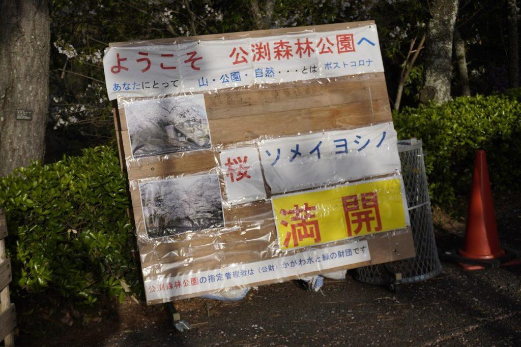 ようこそ公渕森林公園ソメイヨシノ満開の看板