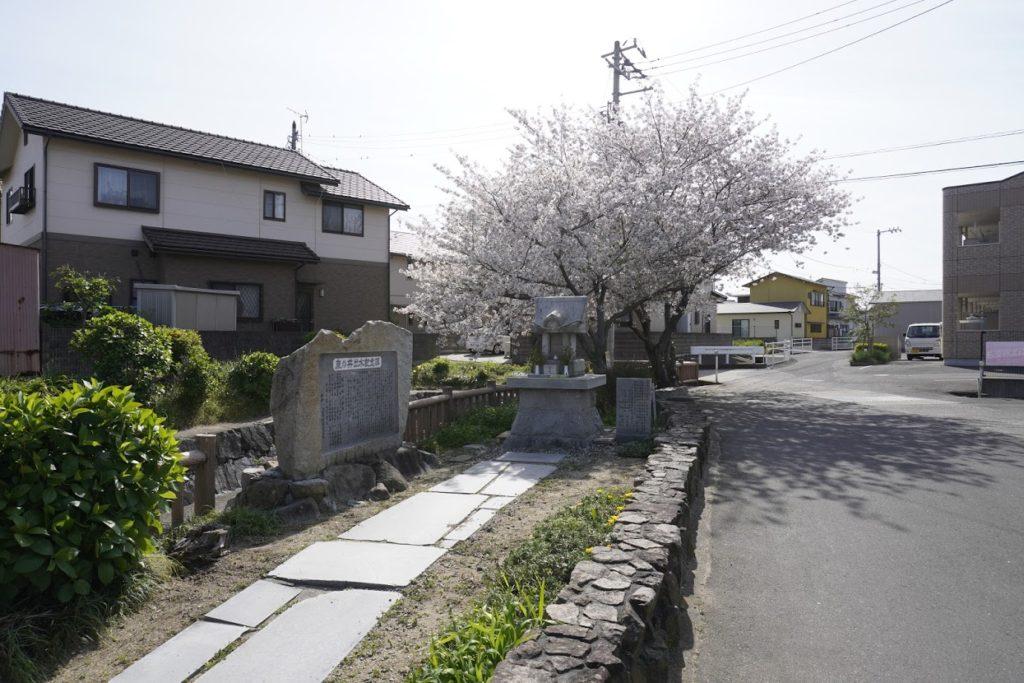鹿の井出水散策路の桜
