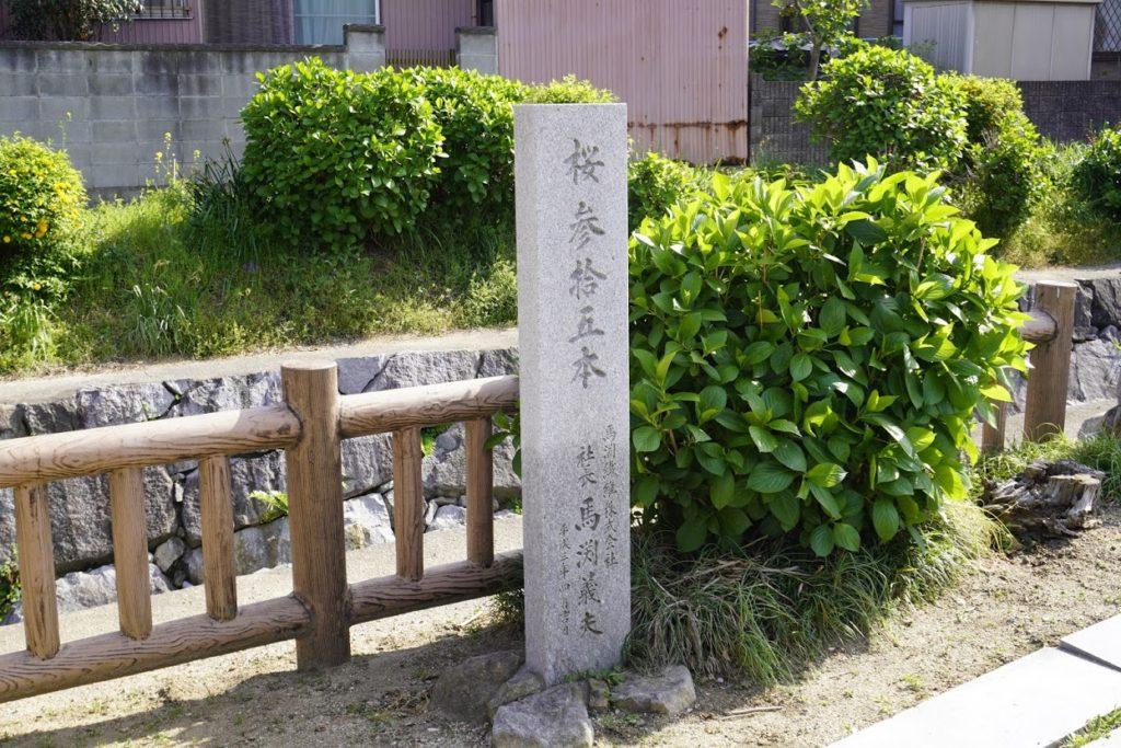 鹿の井出水桜三十五本の碑