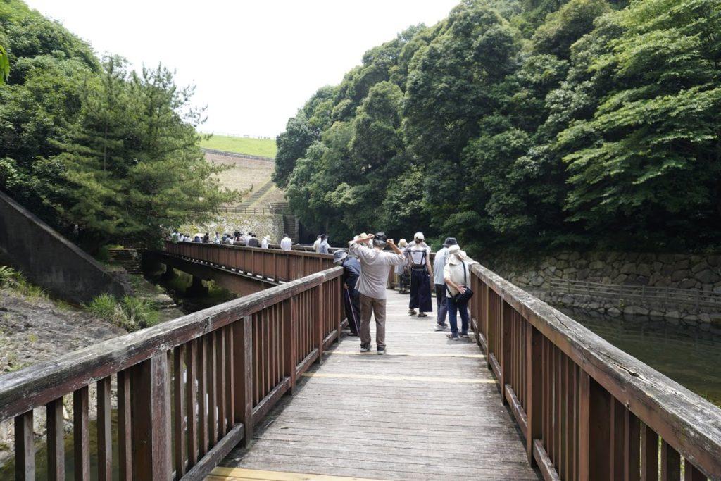 満濃池のゆる抜き 樋門前の散策路
