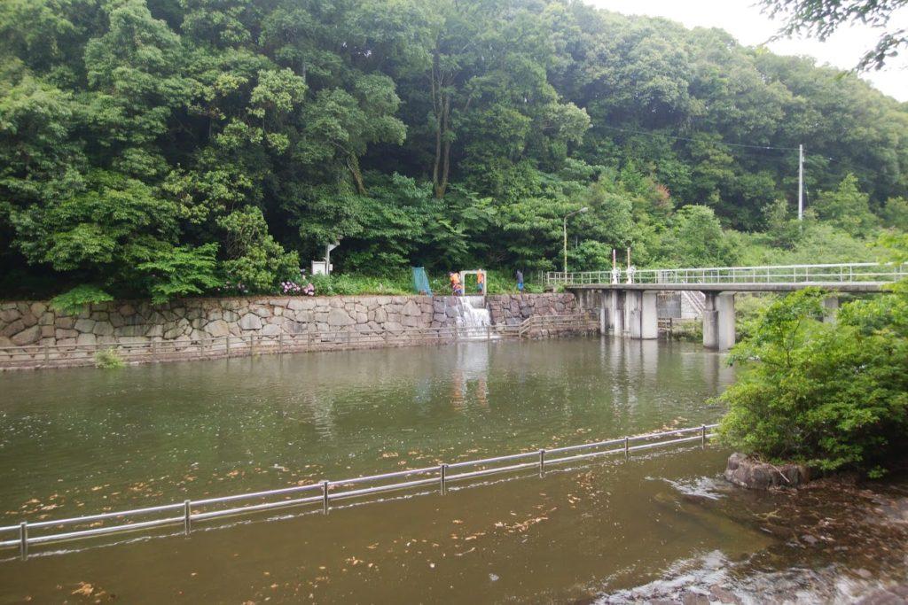 満濃池ゆる抜き後の分水樋門