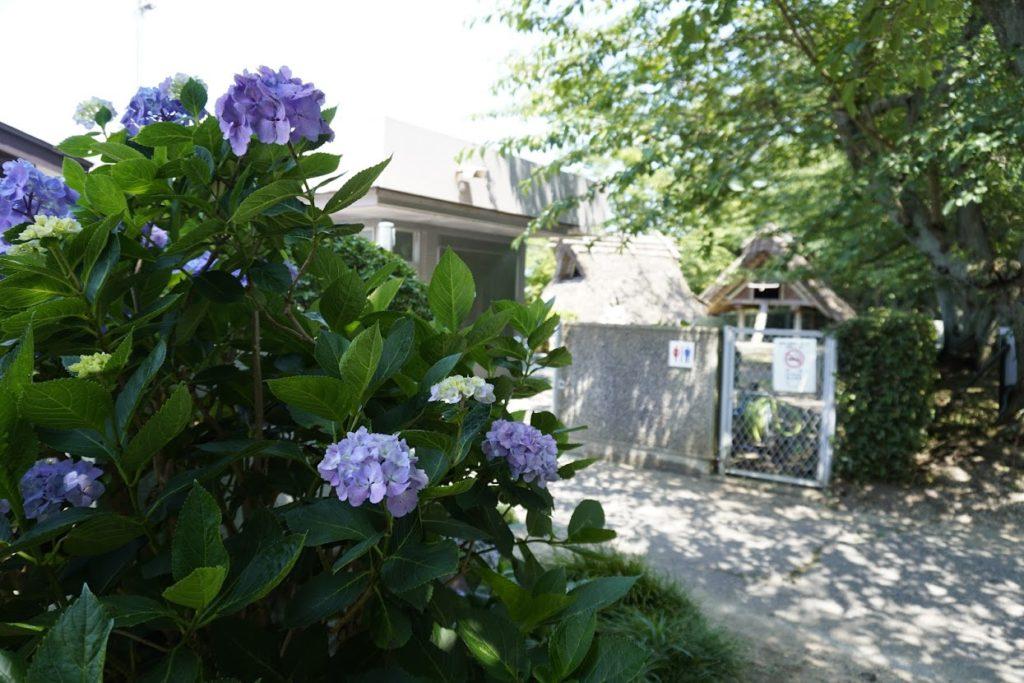 紫雲出山山頂 遺跡館の前