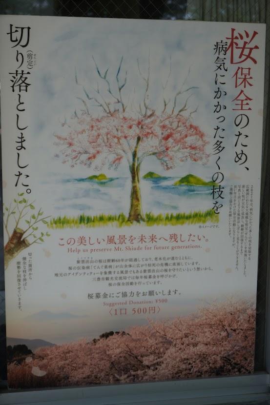 紫雲出山桜基金のポスター