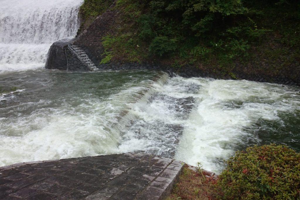 豊稔池ダムゆる抜き時の上樋からの放水
