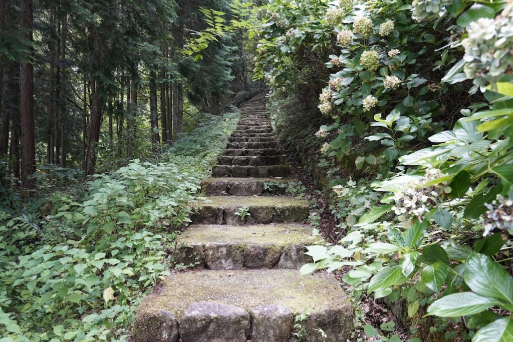 豊稔池堰堤の上へ行く階段