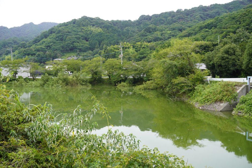 豊稔池下流の井関池