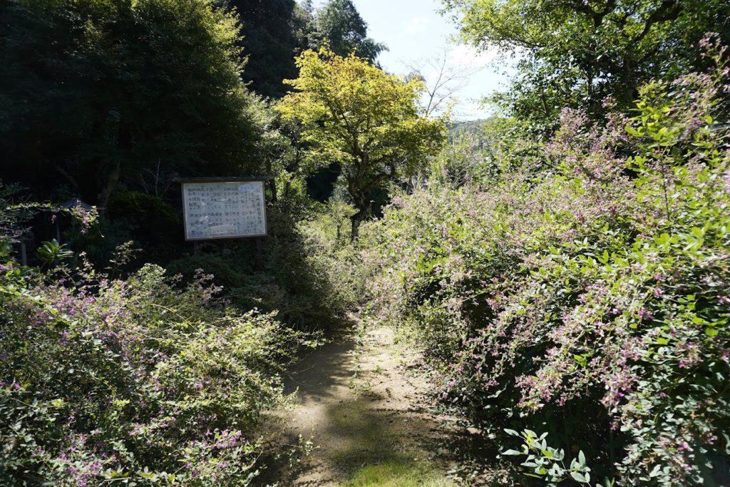 萩の寺 塩江最明寺